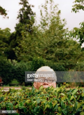 Mature man looking over hedge