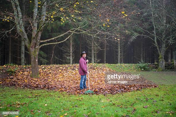 Mature man raking leaves