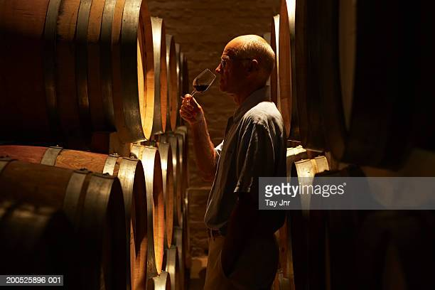 Mature man tasting wine in cellar, side view