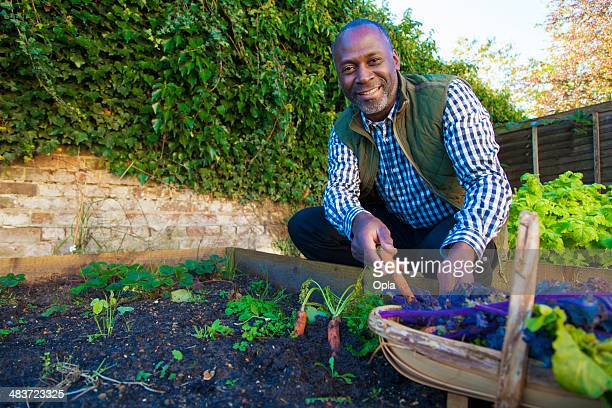 Mature man with organic carrots