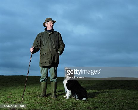 Mature man with sheepdog in field, dusk : Stock Photo
