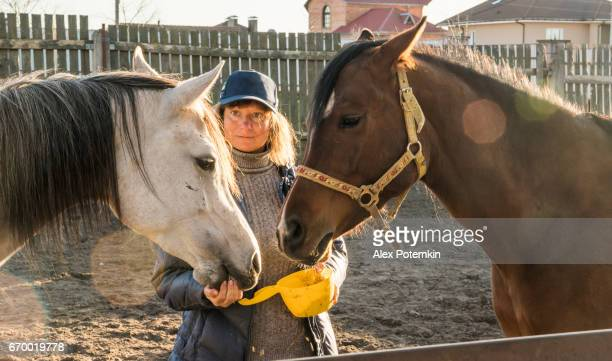 Mature woman feeding two horses on the ranch