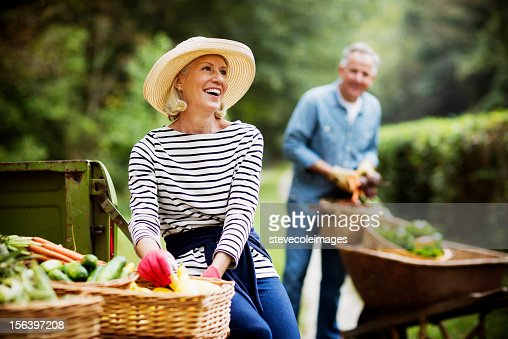 Mature Woman Harvesting Vegetables In Garden.