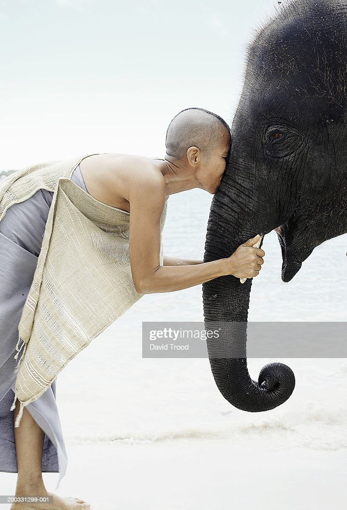 Mature woman kissing young indian elephant, side view : Stock Photo