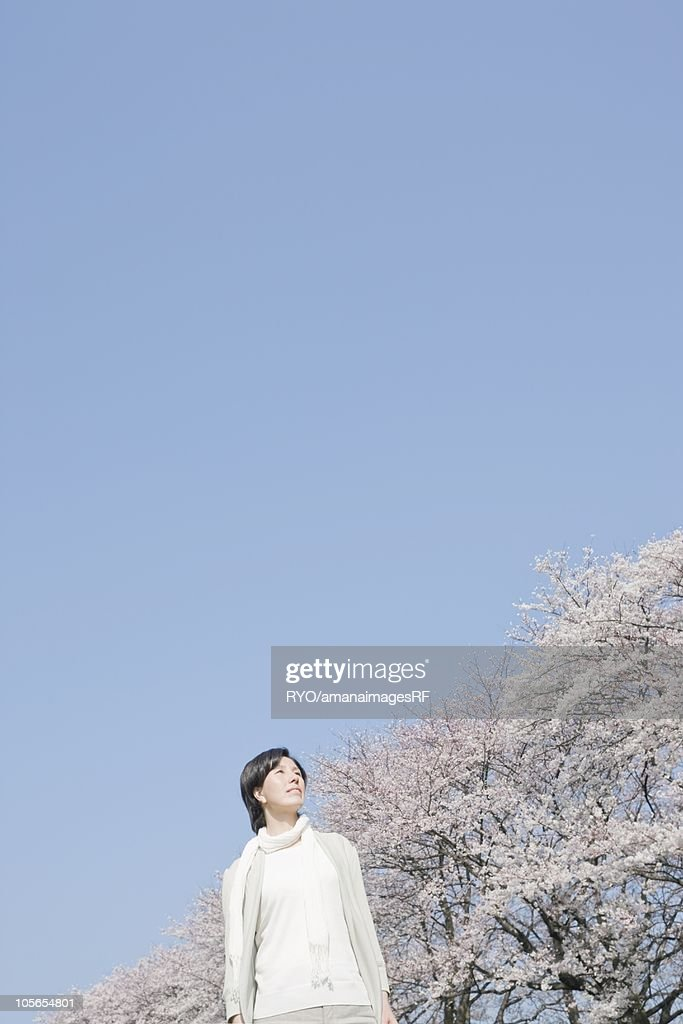 Mature woman looking at cherry blossoms