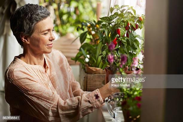 Mature woman nurturing plants in living room