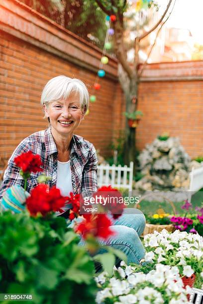 Mature Woman Planting Flowers In Her Backyard.