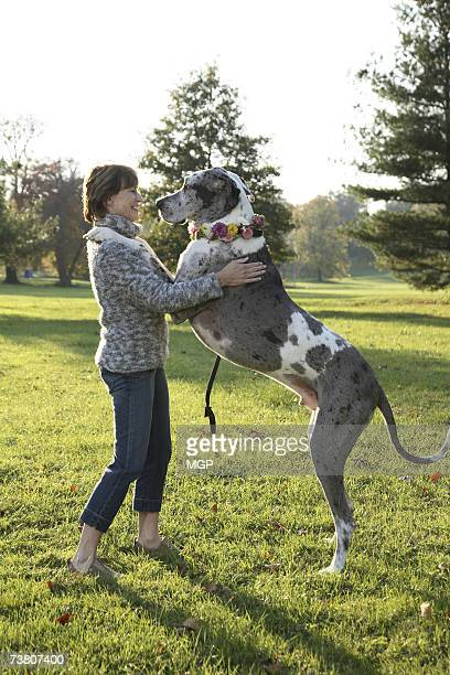 Mature woman playing with great dane in autumn park, smiling, profile