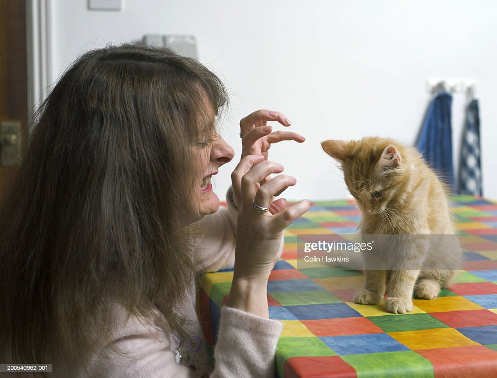 Mature woman pulling funny face at tabby kitten, side view : Stock Photo
