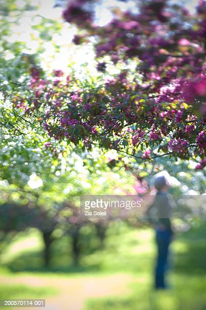 Mature woman standing in park of crabapple trees, selective focus