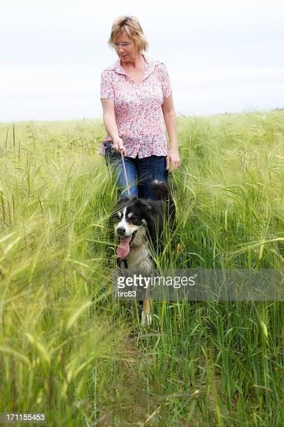 Mature woman walking dog through cornfield
