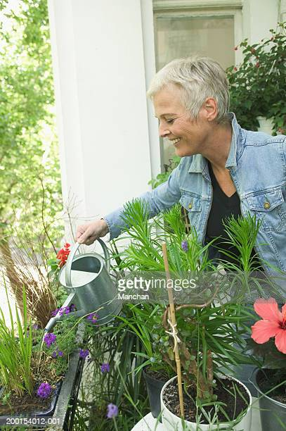 Mature woman watering plants on windowsill