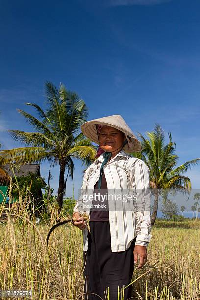 Matured farmer with straw hat in a rice field