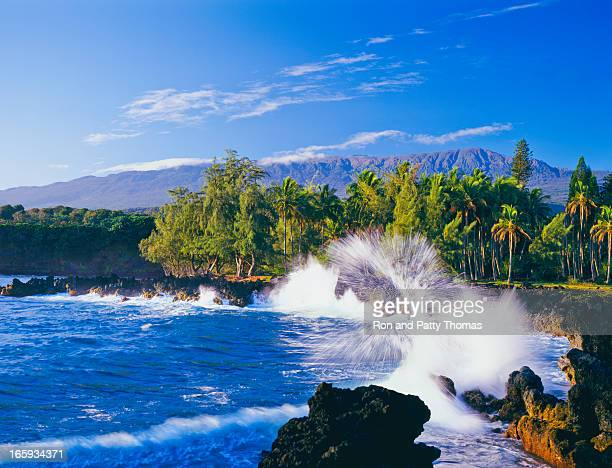 Maui coastline in Hawaii during the day