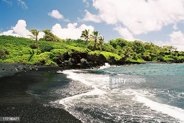 Maui Hawaii Black Sand Beach landscape and Palm Trees