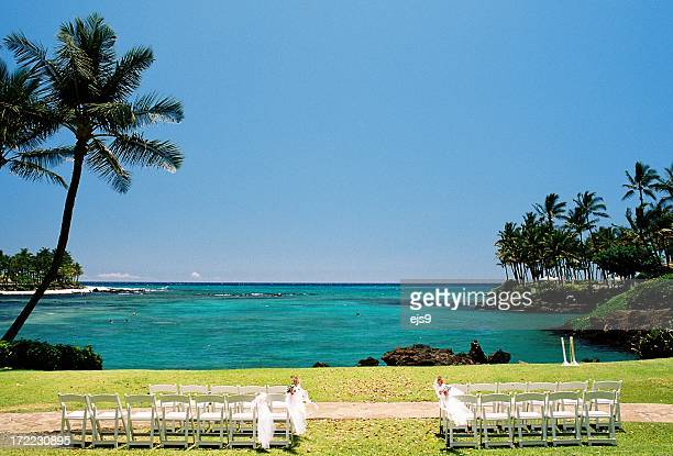 Maui Hawaii Pacific ocean front palm tree wedding spot