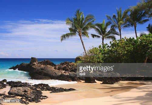 Maui Hawaii Pacific ocean palm tree beach scene