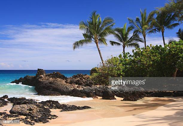 Maui Hawaii Pacific ocean palm tree beach scene