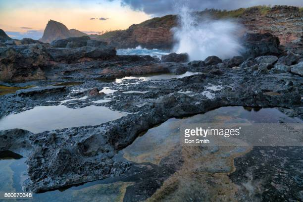 Maui Lava Pools