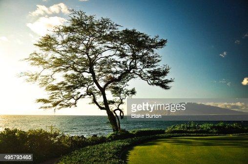 Maui Sunset in Wailea