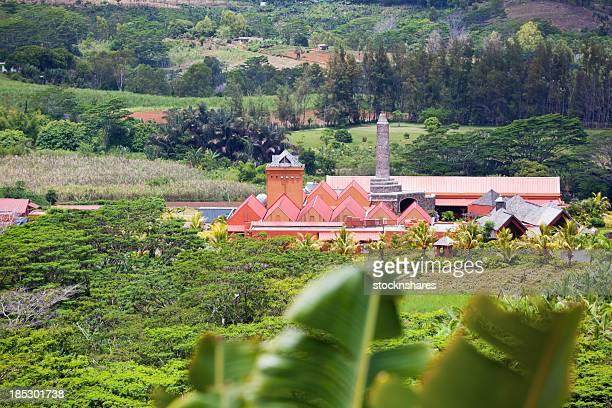 La distillerie de rhum mauricienne