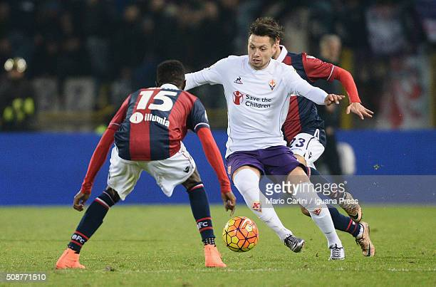 Mauro Zarate of ACF Fiorentina in action during the Serie A match between Bologna FC and ACF Fiorentina at Stadio Renato Dall'Ara on February 6 2016...