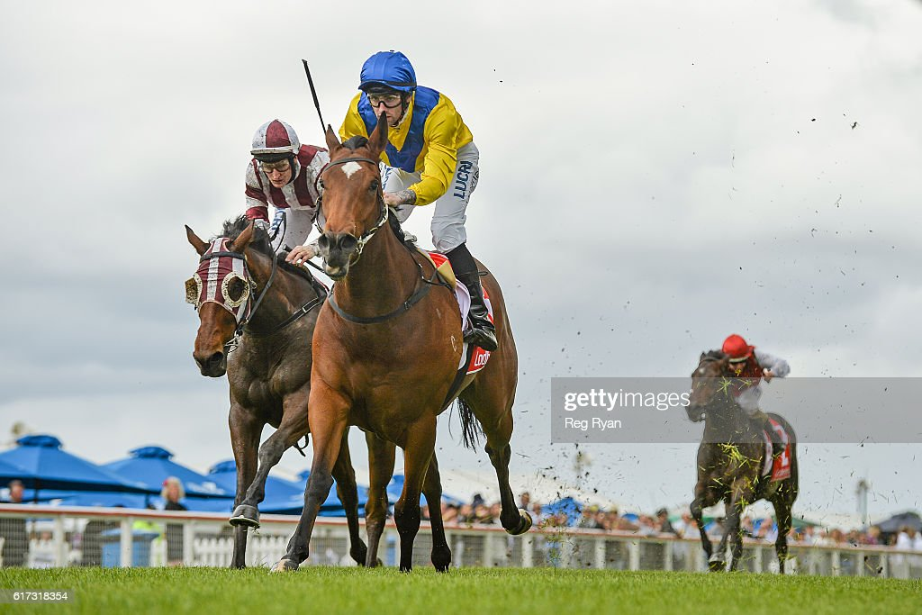 Mawhooba ridden by Jake Noonan wins Pantac Protective Services SV 3YO Maiden Plate at Sale Racecourse on October 23, 2016 in Sale, Australia.