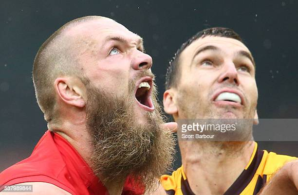 Max Gawn of the Demons and Jonathon Ceglar of the Hawks compete for the ball during the round 11 AFL match between the Hawthorn Hawks and Melbourne...