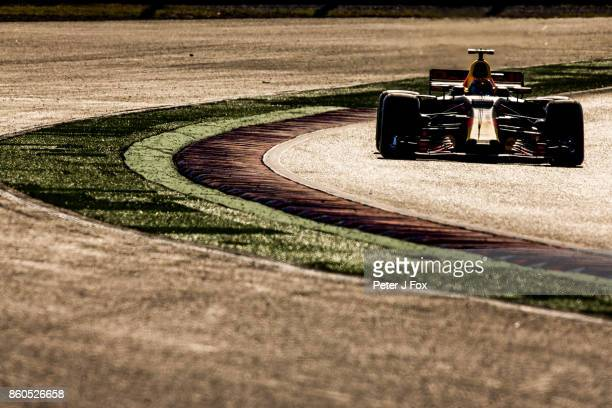 Max Verstappen of The Netherlands and Red Bull Racing during the Formula One Grand Prix of Japan at Suzuka Circuit on October 8 2017 in Suzuka