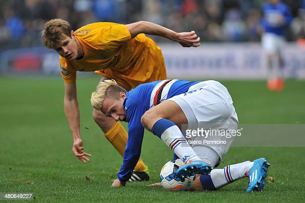 Maxi Lopez of UC Sampdoria is challenged by Michelangelo Albertazzi of Hellas Verona FC during the Serie A match between UC Sampdoria and Hellas...