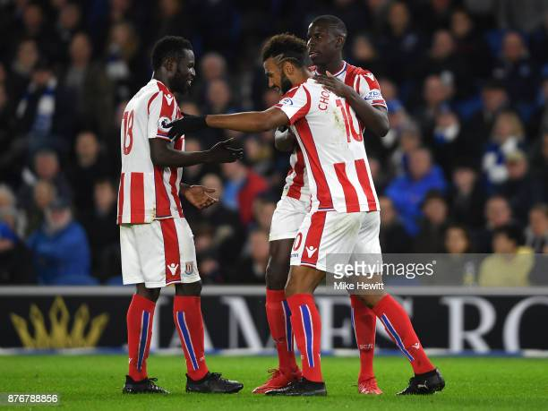 Maxim ChoupoMoting of Stoke City celebrates with team mates after scoring his sides first goal during the Premier League match between Brighton and...