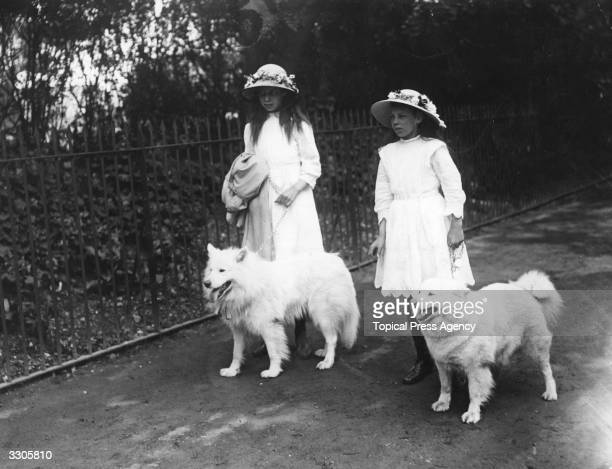Mrs Kilburn Scott's daughters walk their samoyed dogs at the Ladies Kennel Club Show held at the Royal Botanical Gardens