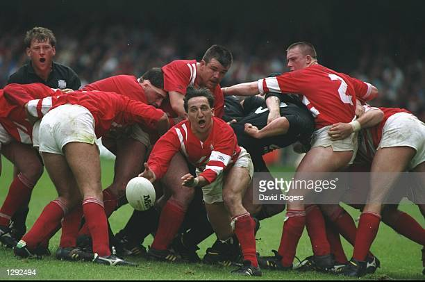 Rupert Moon of Llanelli clears the ball away from a scrum during the SWALEC Cup Final match against Neath at Cardiff Arms Park in Cardiff Wales...