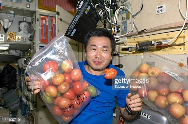 13 May 2009 Japan Aerospace Exploration Agency Astronaut Koichi Wakata Expedition 19/20 Flight Engineer Is Pictured With Fresh Tomatoes And Apples In...