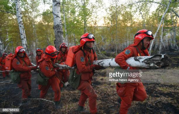 Firefighters clean up in a forest in Chenbaerhu Banner in Hulunbuir City north China's Inner Mongolia Autonomous Region May 21 2017 A forest fire...