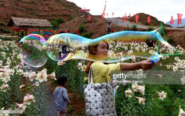 WANZAI May 24 2017 Tourists visit a lily garden in Baishui Town of Wanzai County east China's Jiangxi Province May 24 2017 Wanzai County with a...