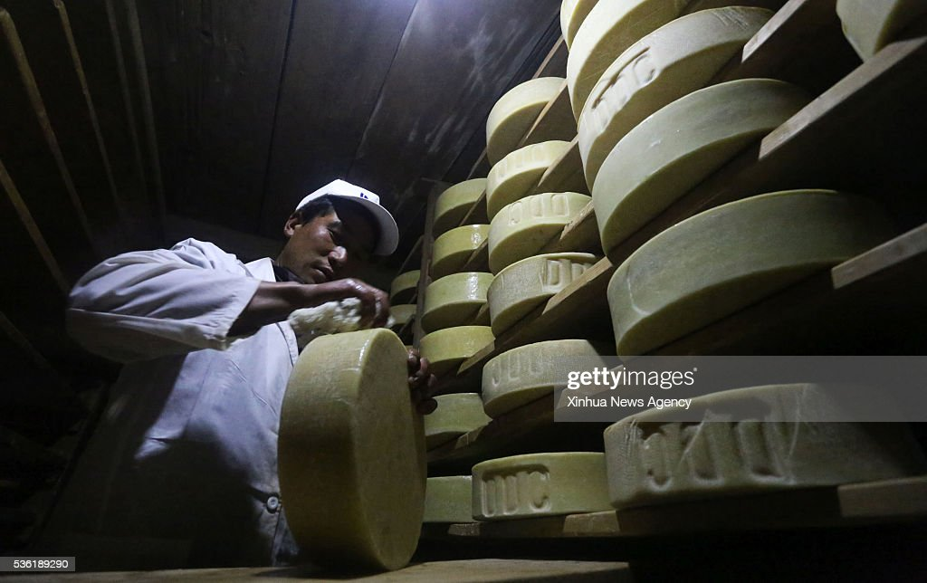 RASUWA, May 31, 2016-- A worker cleans the Yak cheese at the store center of Dairy Development Corporation at Chandanbari in Rasuwa, Nepal, May 30, 2016. Yak cheese production center based at Chandanbari is one of the biggest production centers that attracts local and foreign tourists.