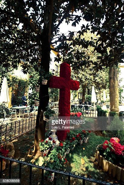 May Cross in Córdoba