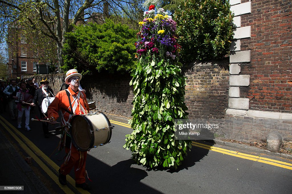 May Day custom of Deptford Jack in the Green, a man encased in a framework entirely covered with greenery, is one of the lesser-known modern revivals (by the Blackheath Morris Men) of English traditional customs on May 1st 2016 in London, United Kingdom. The procession begine, working it's route through Deptford. Fowlers Troop Jack in the Green was revived in the early 1980s. Originally a revival from about 1906, it developed from the 17th Century custom of milkmaids going out on May Day with the utensils of their trade, decorated with garlands of flowers and piled into a pyramid which they carried on their heads. By the mid eighteenth century other groups, notably chimney sweeps, were moving in on the milkmaids' territory as they saw May Day as a good opportunity to collect money, so carried a Jack in the Green. Over the last 25 years several popular festivals have grown up around the Jack in the Green tradition. Deptford Jack in the Green is not very widely known although it has been running since the early 1980s.