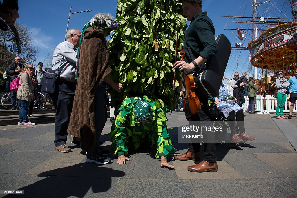 May Day custom of Deptford Jack in the Green, a man encased in a framework entirely covered with greenery, is one of the lesser-known modern revivals (by the Blackheath Morris Men) of English traditional customs on May 1st 2016 in London, United Kingdom. Working it's route along the river, the Jack reaches Greenwich, underneath the masts of the Cutty Sark. Fowlers Troop Jack in the Green was revived in the early 1980s. Originally a revival from about 1906, it developed from the 17th Century custom of milkmaids going out on May Day with the utensils of their trade, decorated with garlands of flowers and piled into a pyramid which they carried on their heads. By the mid eighteenth century other groups, notably chimney sweeps, were moving in on the milkmaids' territory as they saw May Day as a good opportunity to collect money, so carried a Jack in the Green. Over the last 25 years several popular festivals have grown up around the Jack in the Green tradition. Deptford Jack in the Green is not very widely known although it has been running since the early 1980s.
