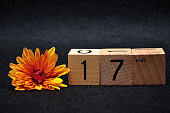 17 May on wooden blocks with am orange daisy on a black background