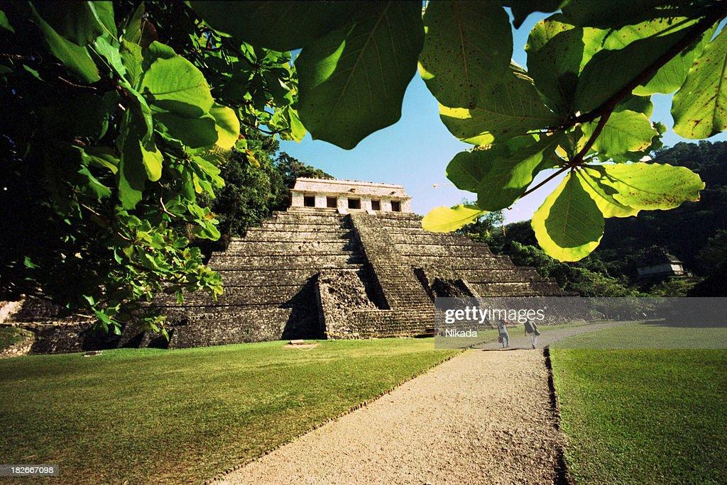 マヤの寺院 : ストックフォト