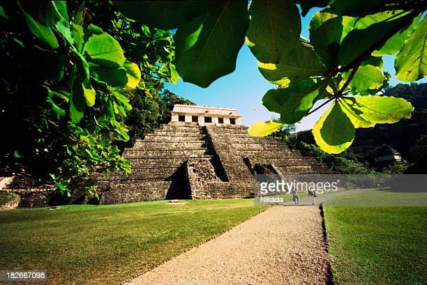 マヤの寺院