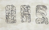 Mayan glyphs engraved on stele 39 at Tikal drawing Mayan civilisation
