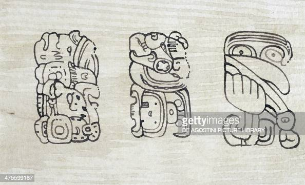 Mayan glyphs engraved on stele 39 at Tikal drawing Mayan civilisation