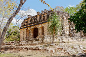The ruins of a Mayan temple at Uxmal amongst the trees