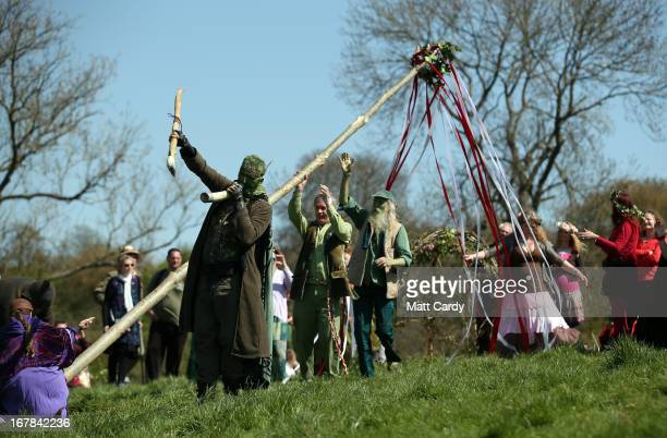 Maypole is raised to be used in a Beltane May Day celebration below Glastonbury Tor on May 1 2013 in Glastonbury England Although more synonymous...