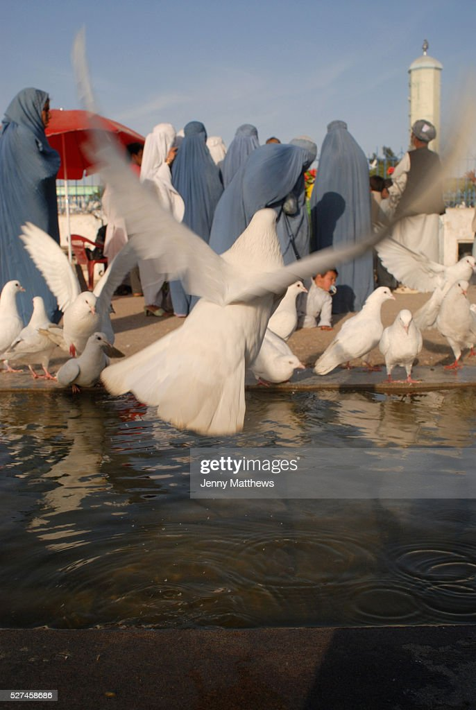 MazariSharif shrine of Hazrat Ali cousin and soninlaw of the prophet Mohammed Women feed the white doves