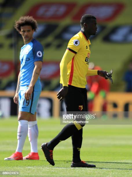 Mbaye Niang of Watford removes a bird from the pitch during the Premier League match between Watford and Manchester City at Vicarage Road on May 21...