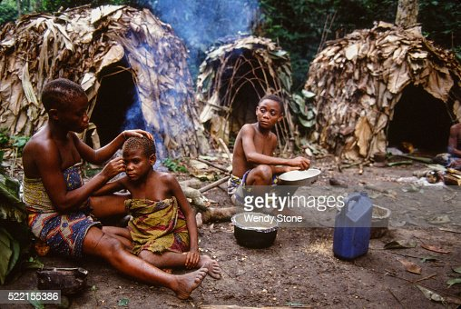 mbuti pygmies The american theatres and movies paint the scene of a rainforest as a primitive place that is less than appealing for the laid back life of ease found in a domesticated life.